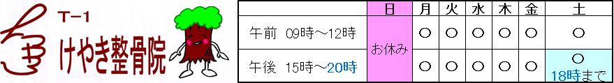 T-1 けやき整骨院(整体)